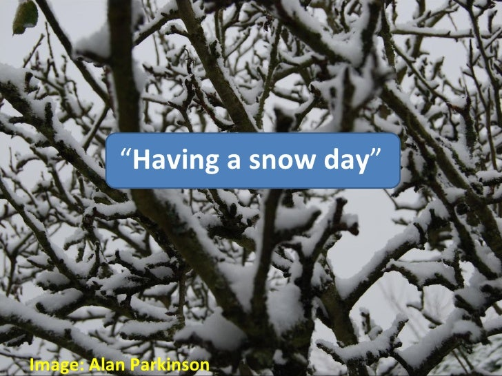 """ Having a snow day "" Image: Alan Parkinson"