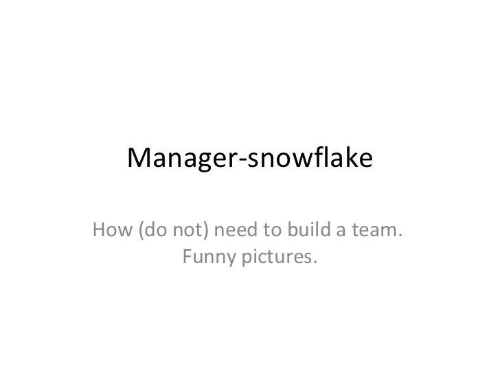 Manager-snowflake How  ( do not )  need to build a team.  Funny pictures.