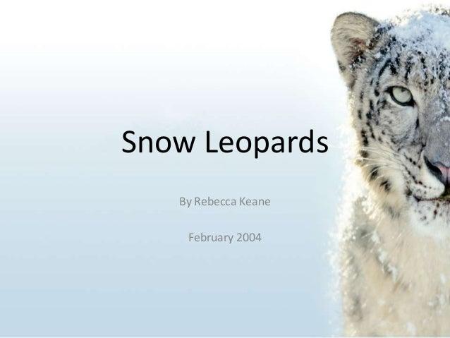Snow Leopards By Rebecca Keane February 2004