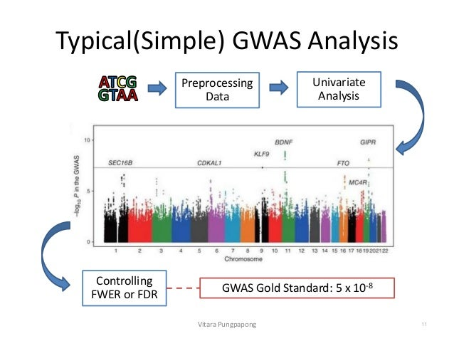 SNPpy - Database Management for SNP Data from Genome Wide ...