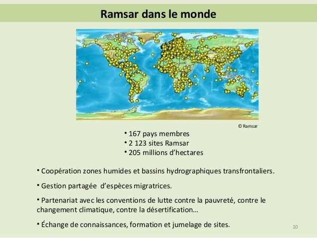 Convention relative aux zones humides (Ramsar)  dans Nature
