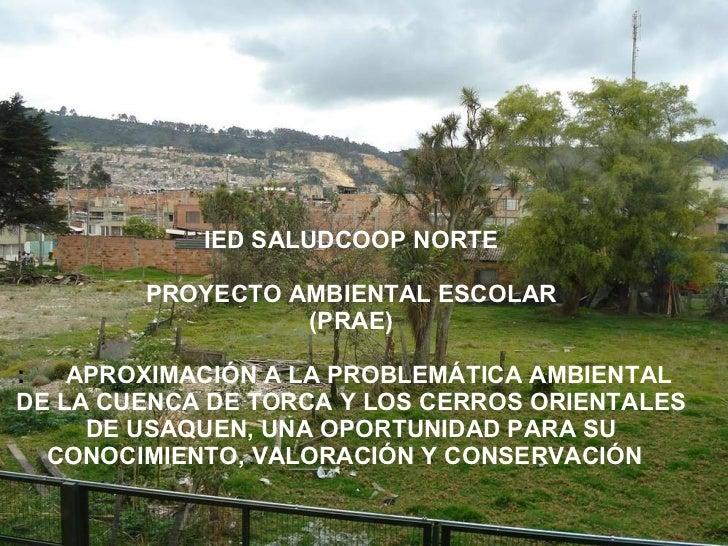 IED SALUDCOOP NORTE PROYECTO AMBIENTAL ESCOLAR (PRAE) :  APROXIMACIÓN A LA PROBLEMÁTICA AMBIENTAL  DE LA CUENCA DE TORCA Y...