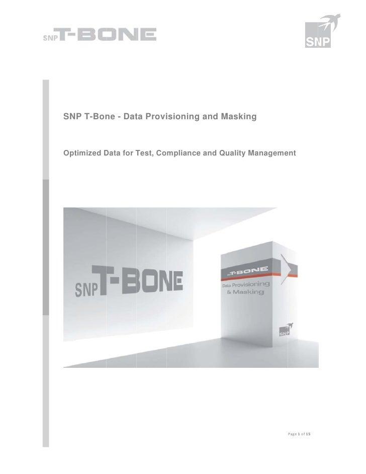 SNP T-Bon - Dat Provi        ne    ta    isioning and M                           g     Masking  timized DOpt       Data ...