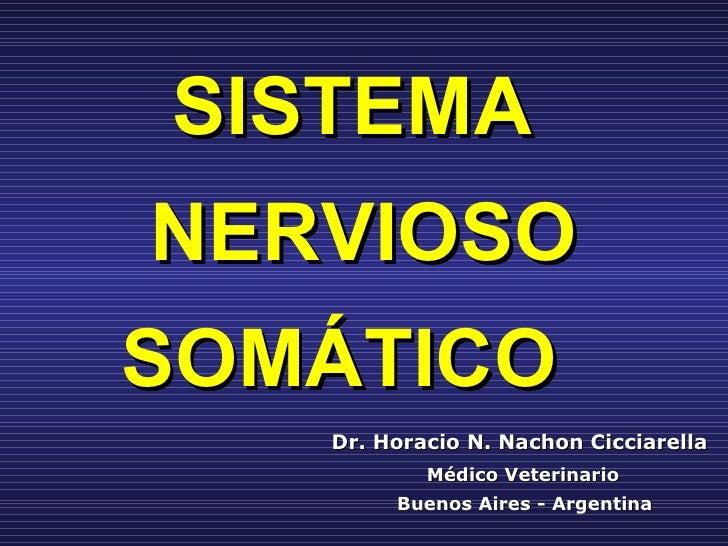 SISTEMA  NERVIOSO SOMÁTICO   Dr. Horacio N. Nachon Cicciarella   Médico Veterinario   Buenos Aires - Argentina