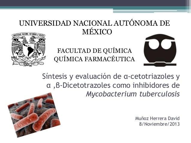 Síntesis y evaluación de α-cetotriazoles y α ,β-Dicetotrazoles como inhibidores de Mycobacterium tuberculosis Muñoz Herrer...