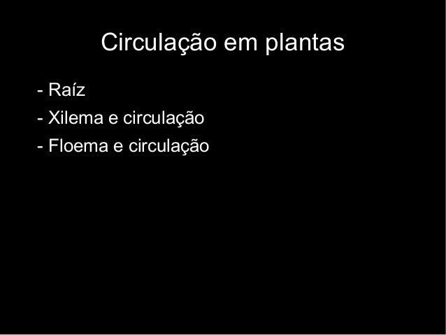 Circulação em plantas  • - Raíz  • - Xilema e circulação  • - Floema e circulação