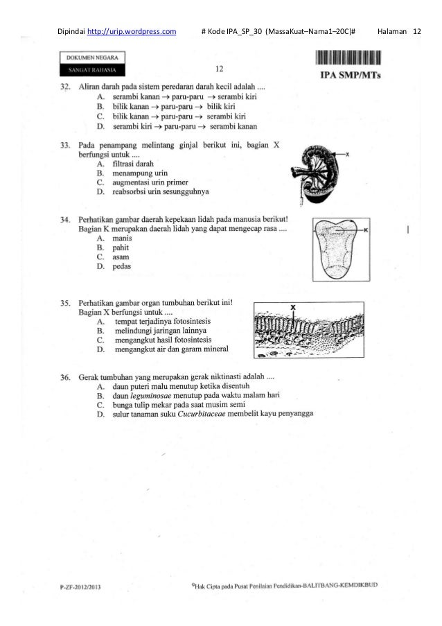 Soal Un Ipa Smp Online Soal Un Ipa Smp 2012 Proprofs Quiz Pembahasan Soal Un Ipa Smp 2012