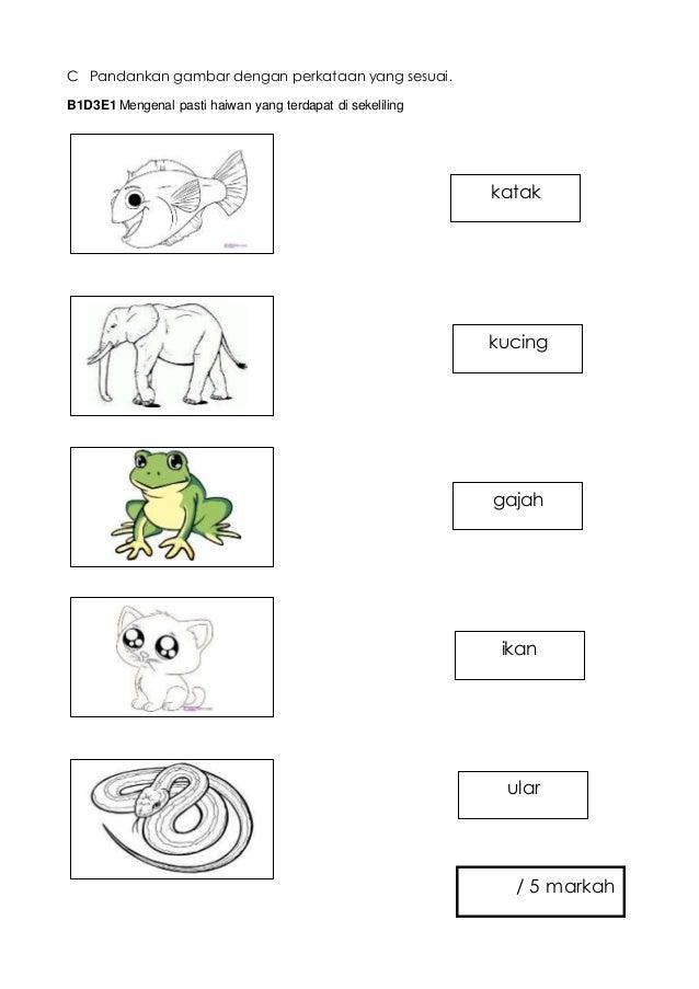 C Pandankan gambar dengan perkataan yang sesuai. B1D3E1 Mengenal pasti haiwan yang terdapat di sekeliling gajah ikan katak...