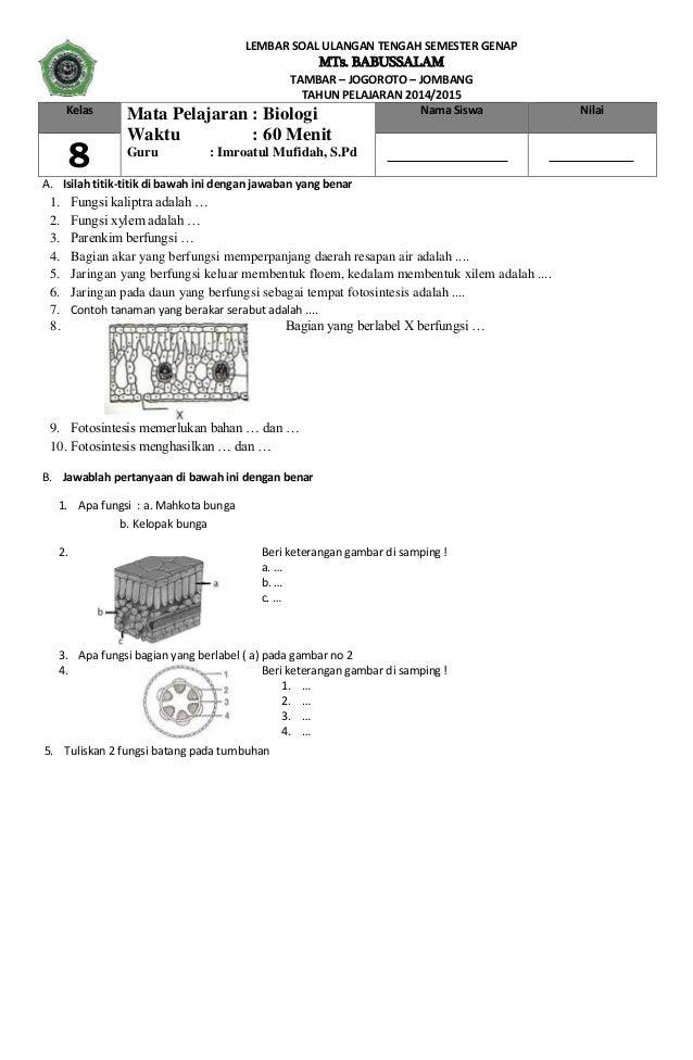 contoh soal essay terstruktur biologi