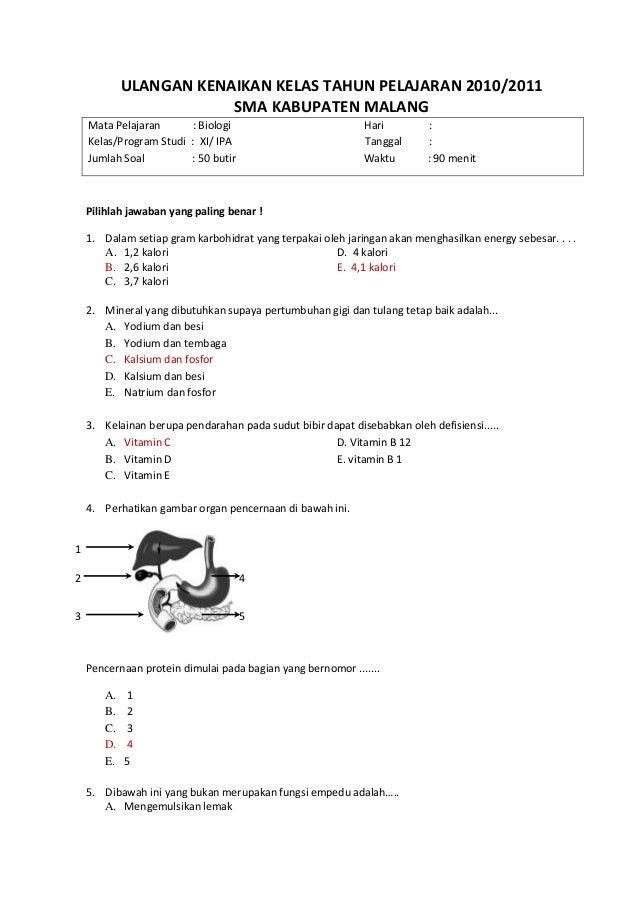 Soal Ukk Biologi Kelas 10 Belajar