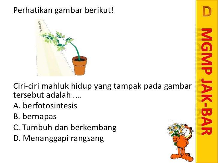 Soal UN 2012 NO.23 BIOLOGI CIRI - CIRI MAKHLUK HIDUP