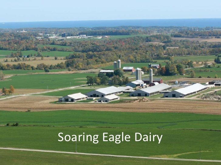 Soaring Eagle Dairy<br />