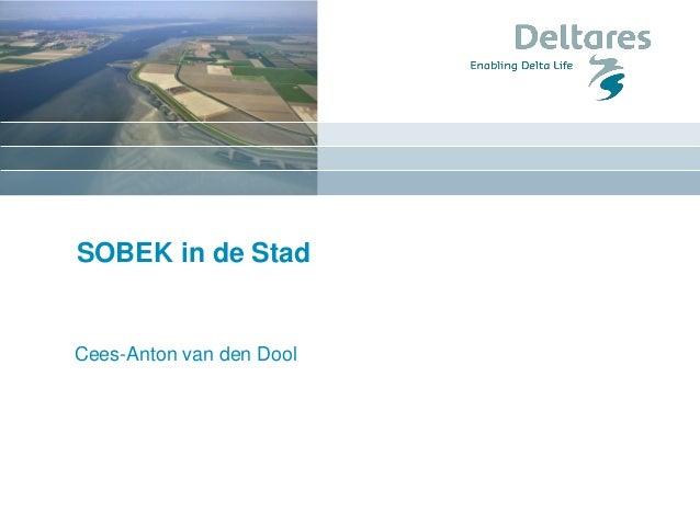 SOBEK in de Stad Cees-Anton van den Dool