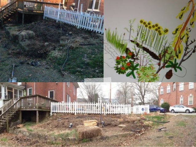 Edible Landscaping Yard Garden Halifax County South