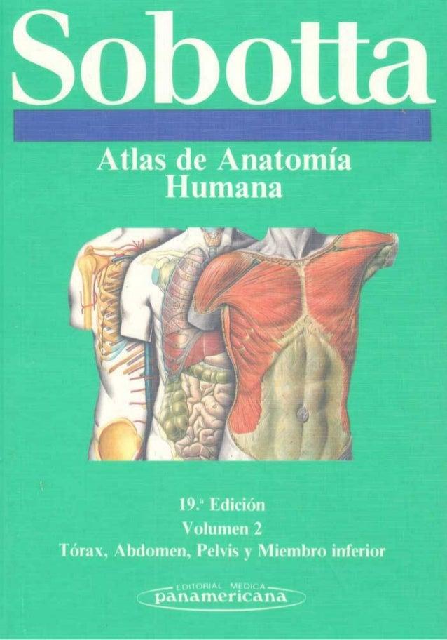 atlas de anatomia sobotta gratis