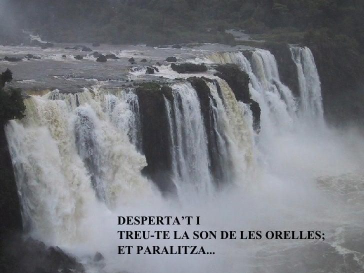 DESPERTA'T I TREU-TE LA SON DE LES ORELLES; ET PARALITZA...