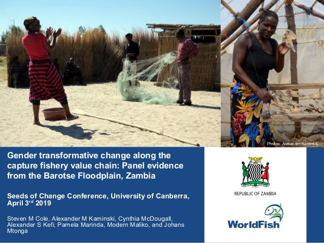 Gender transformative change along the capture fishery value chain: Panel evidence from the Barotse Floodplain, Zambia See...
