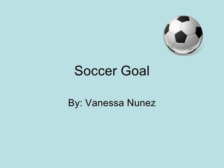 Soccer Goal By: Vanessa Nunez