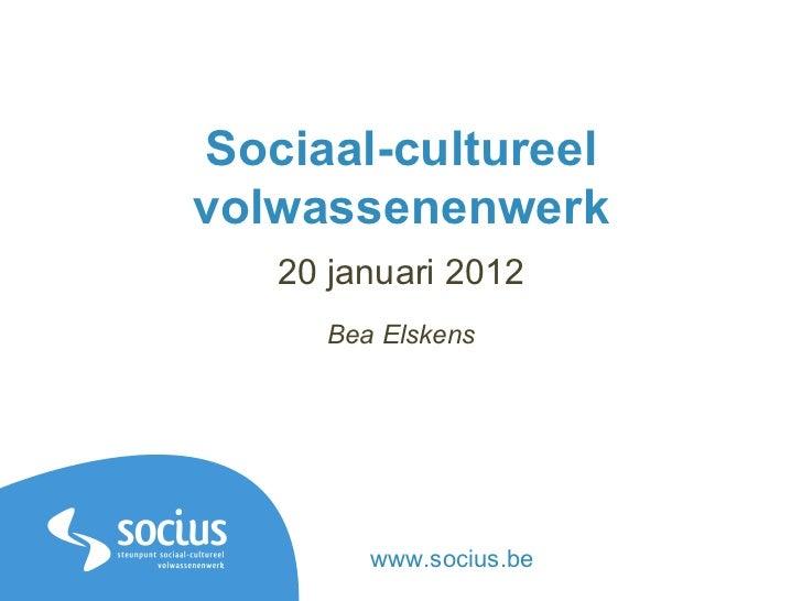 Sociaal-cultureel volwassenenwerk 20 januari 2012 Bea Elskens www.socius.be