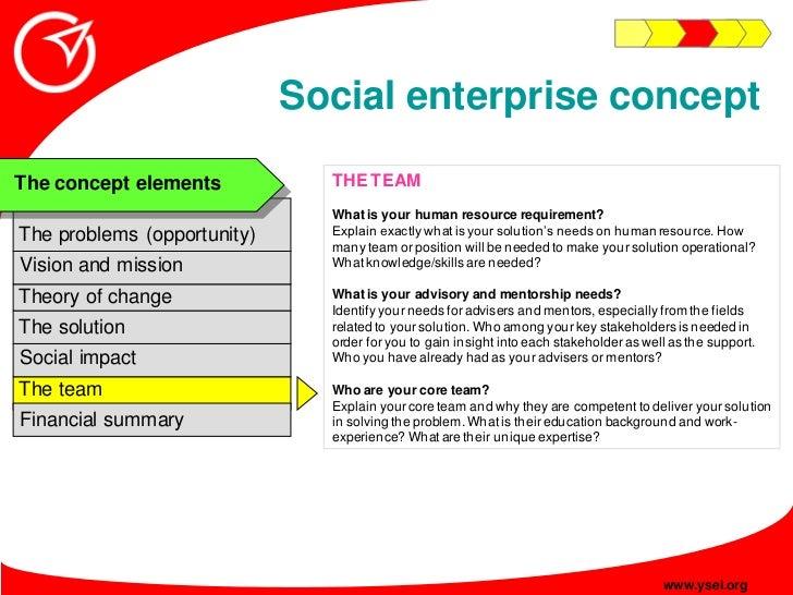 Social enterprise concept                                THE TEAM The concept elements                                What...
