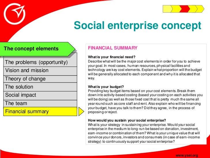Social enterprise concept                                FINANCIAL SUMMARY The concept elements                           ...