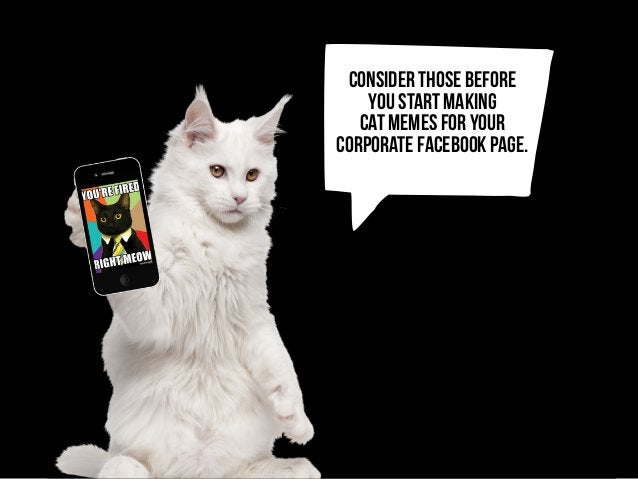 j consider thOSE before you start making cat memes for your corporate facebook page.
