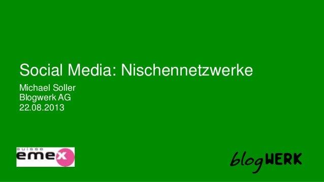 Blogwerk AG Social Media: Nischennetzwerke Michael Soller 22.08.2013