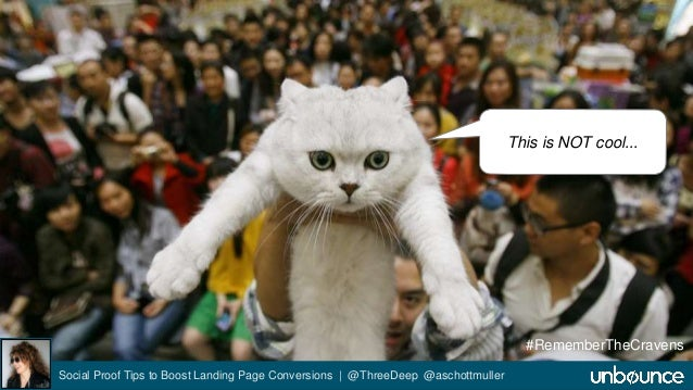 Social Proof Tips to Boost Landing Page Conversions | @ThreeDeep @aschottmuller  This is NOT cool...  #RememberTheCravens