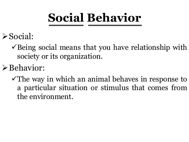 social studies in human behavior Gen ed attribute: behavioral and social science distributive  approaches to  the study of human spatial behavior and the distribution of social problems.