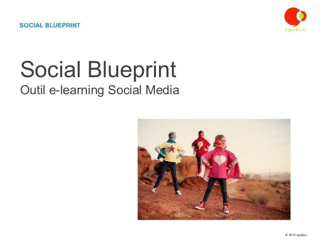 Social BlueprintOutil e-learning Social Media                                © 2012 cgo&co