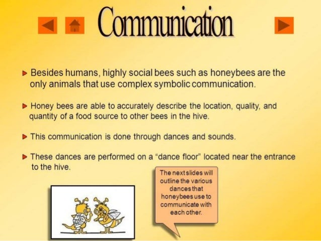 the communication among honeybees Note: much of the research on the two competing hypotheses of communication has been restricted to western honey bees (see the work of fc dyer[19] though) other species of apis use variants on the same theme, and other types of bees use other methods altogether.