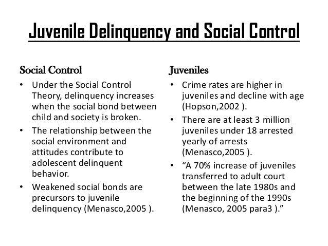The Effects of Juvenile Delinquency