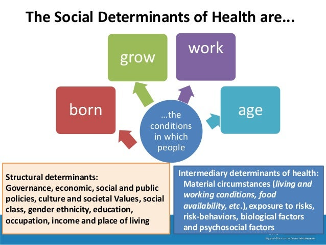 the social and economic factors that determine the health of an individual Social factors of education there the needs of the individual learner and know understanding of the social, cultural, political and economic implications of.