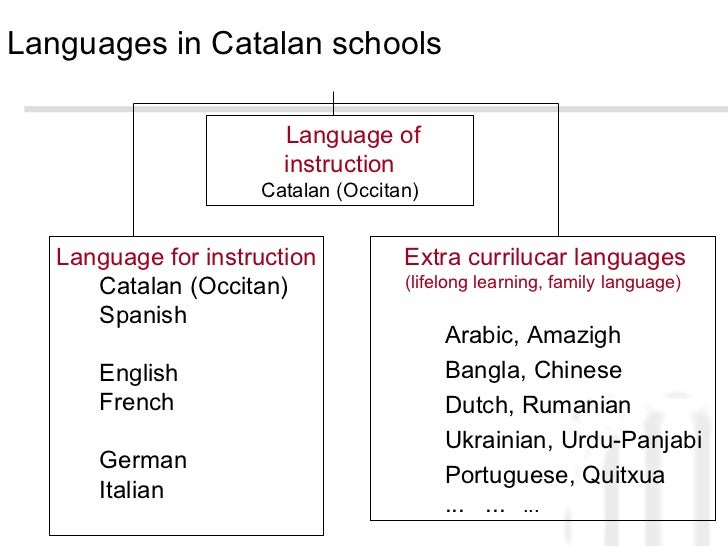 'Abandonment' of minority language by Spain denounced at EU