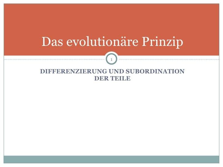 <ul><li>DIFFERENZIERUNG UND SUBORDINATION DER TEILE </li></ul>Das evolutionäre Prinzip