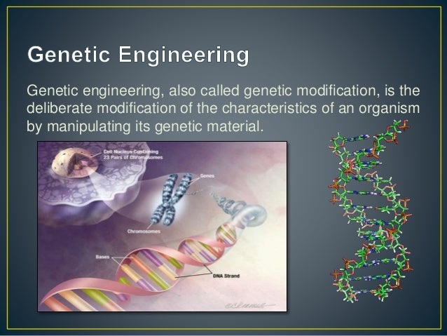 Genetic engineering of animals: Ethical issues, including welfare concerns