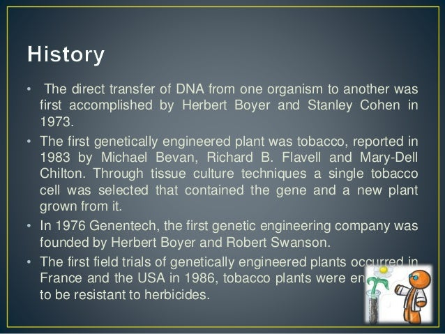 ethical controversy surrounding the subject of genetic engineering Moral and ethical issues in genetic engineering in the field of crop and meat production, the use of genetically modified organisms (gmos) is now a reality.