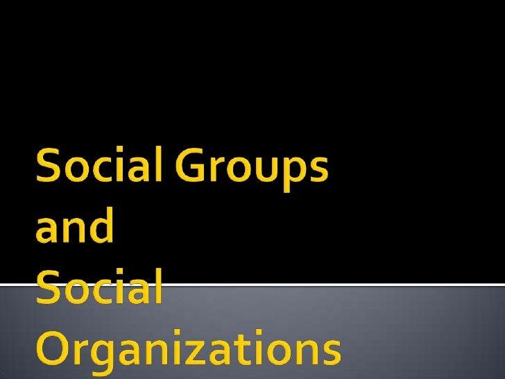 Social Groupsand Social Organizations<br />