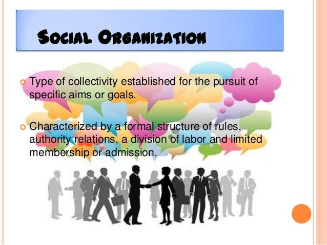 examples of social groups in an organization Nonprofit organizations  self- help groups or museums,  s are called social welfare organizations,.