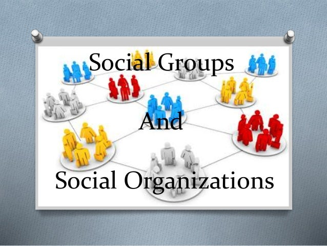 social groups and social organizations Social psychology: social psychology in setting up the social organization of businesses and psychiatric all small social groups do not function according to.