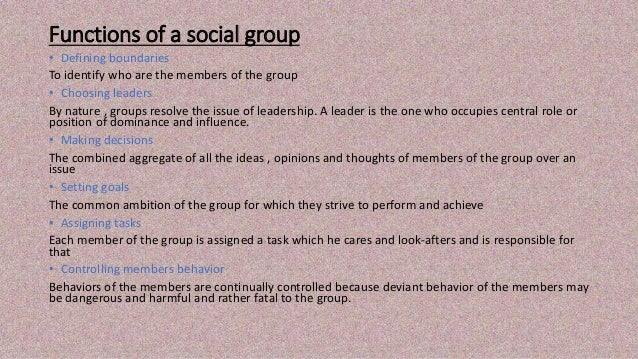 functions of social groups