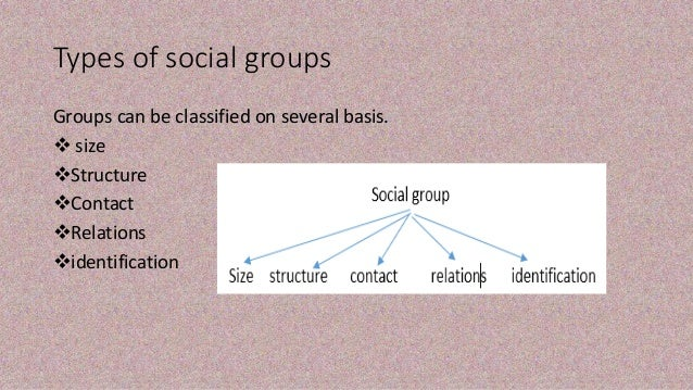 types of social groups It is thus important for our understanding of the development of group psychology  to ask whether children distinguish different types of social.