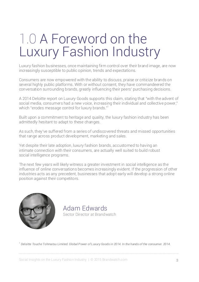 Social Insights on the Luxury Fashion Industry Slide 3