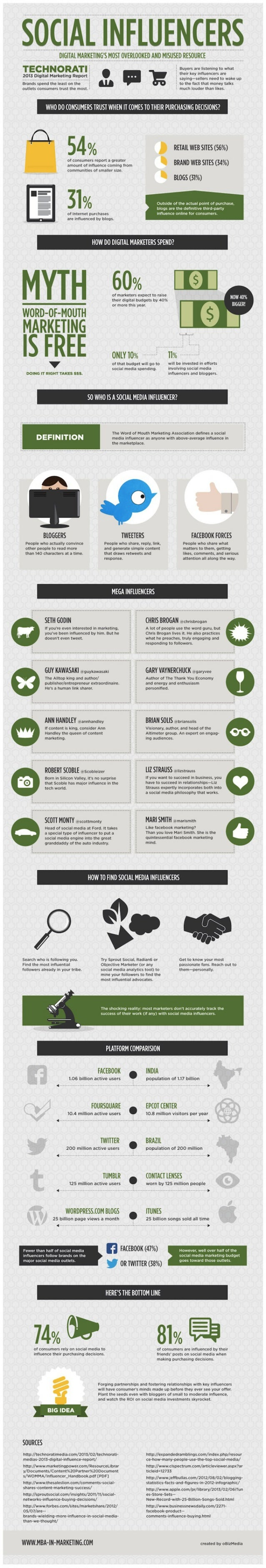 Collaborative IQ with Denise Holt - INFOGRAPHIC Social Influencers