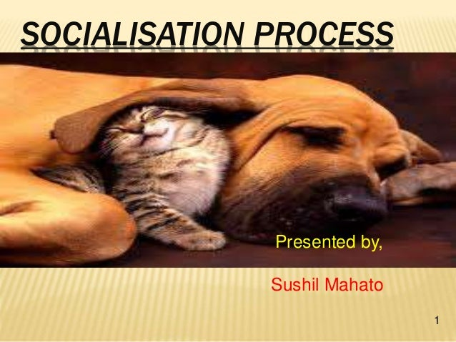 SOCIALISATION PROCESS 1 Presented by, Sushil Mahato