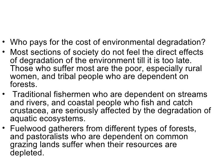 society and the environmental problems Has become clear that the environmental problems ofthese countries are large   because ofa divergence between private and social costs2 he expanded on.