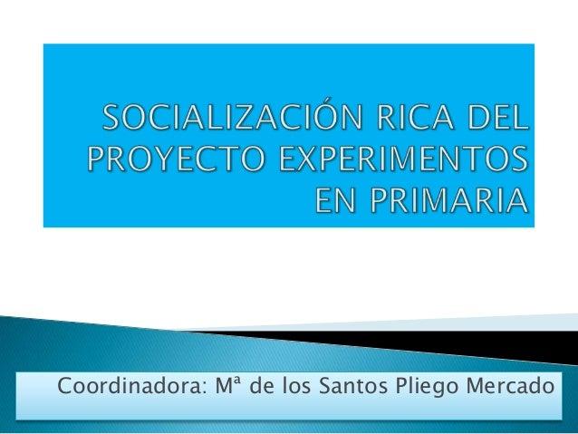 Coordinadora: Mª de los Santos Pliego Mercado