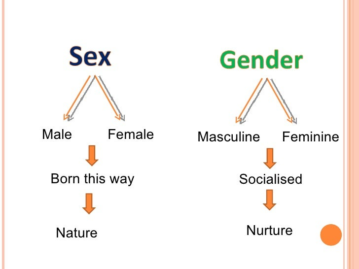 Image result for female socialisation