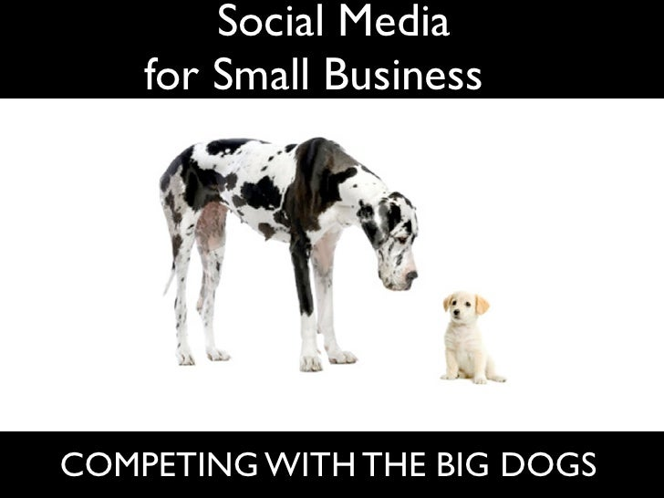 Social Media     for Small Businesses     COMPETING WITH THE BIG DOGS