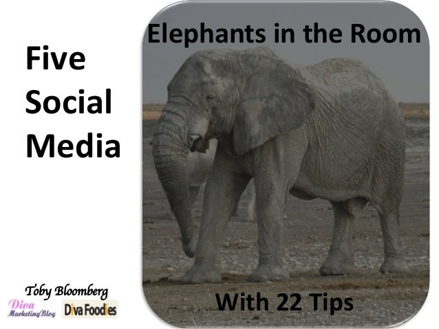 Toby Bloomberg	  Five	 Social		 Media		 Elephants	in	the	Room	 With	22	Tips